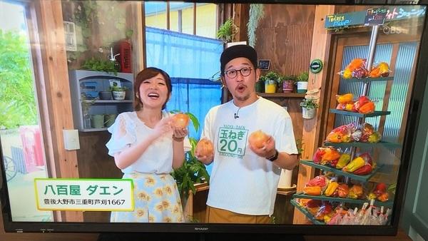 OBS『アレ・コレBOX』さんにTV取材を受けました。